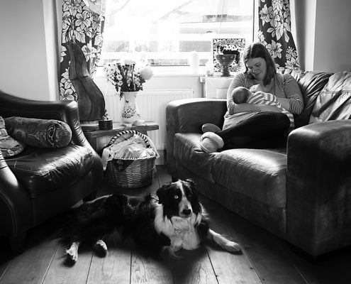 baby breastfeeding with mum, dog, lifestyle newborn photography Leicestershire