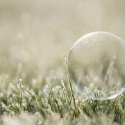 Frost snow frozen bubble on grass snowy wedding day